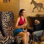 dining-zebra-1